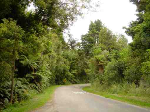 totara reserve road