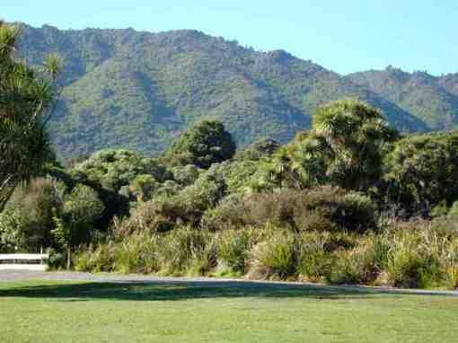 Nga Manu landscape