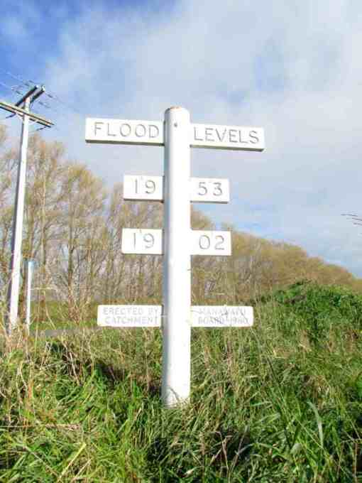 Opiki flood levels