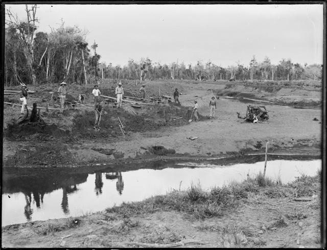 Draining Kaitaia Swamp Envirohistory Nz