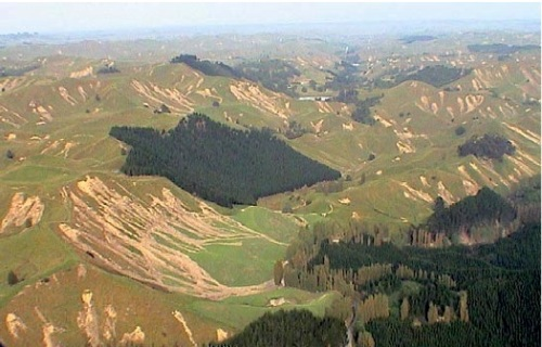 Multiple slips in the Manawatu following the 2004 storm (Source: NZ Farm Forestry Association)