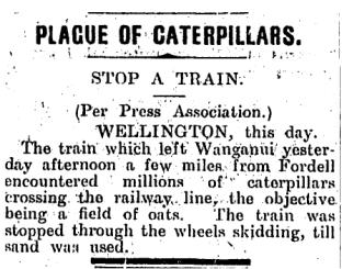 Plague of caterpillars 1910
