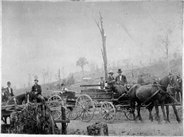 This image taken by Charles E. Wildbore circa 1907 shows the rural mail delivery that operated in the Pohangina Valley. The background of scorched, leafless tree trunks and limbs draws the eye of the environmental historian. Palmerston North City Library, ID 2007N_Poh2_RTL_0852