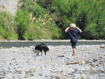 Pohangina River 2