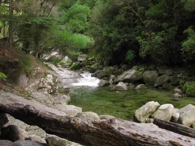 Wainui River 2