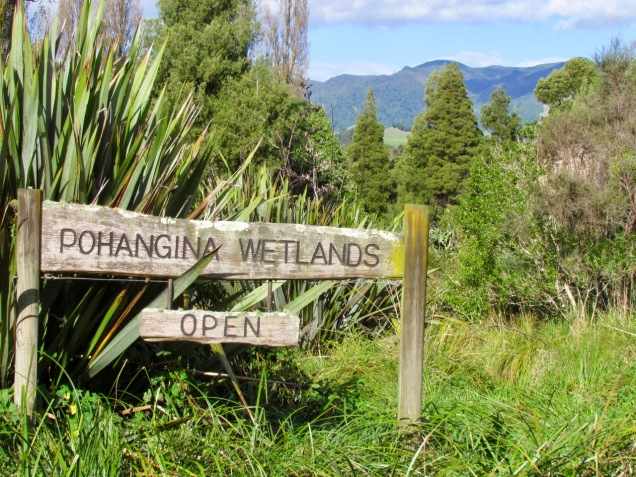 Pohangina wetland.jpg
