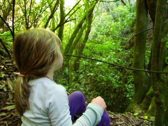 Caitlyn gully 2.jpg