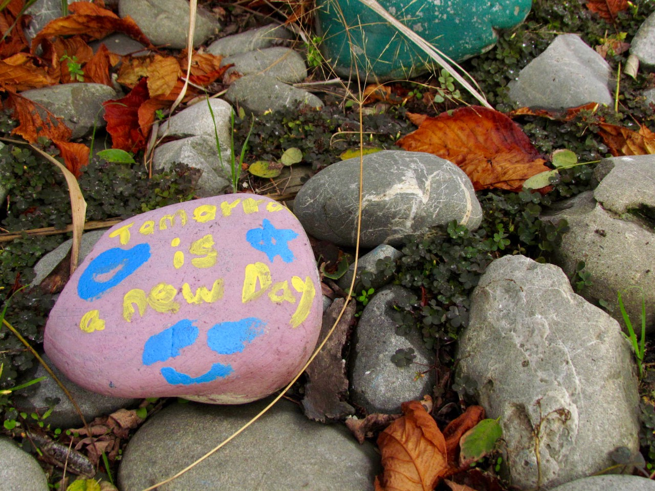 rocks in the Recovery Garden